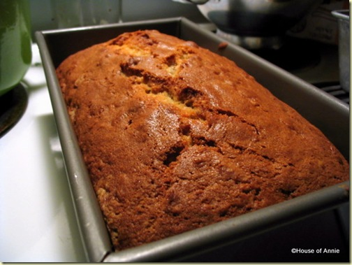 dutch apple bread baked