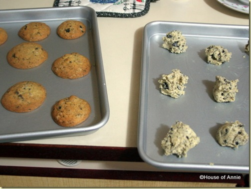 baked and unbaked dirt cookies