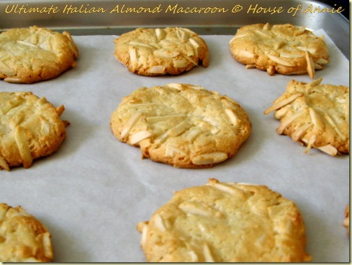 ultimate italian almond macaroons