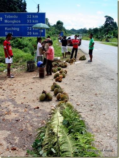 roadside durian sellers outside serian