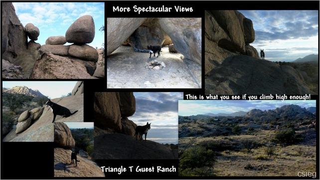 Triangle T Ranch Dragoon, AZ-13