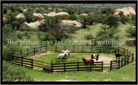 Triangle T Guest Ranch Info 4