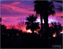 KOA Sunsets  (8)