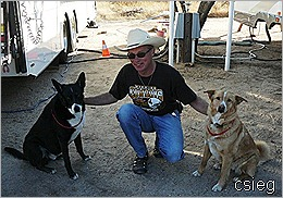 Beemer and Dogs 20