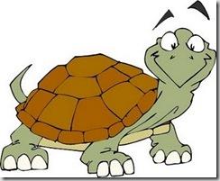 Tartaruga - slogo