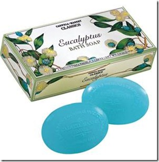 EucalyptusSoapSiloSm