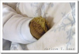 tn_2010-01-03 Marlowe's Paws