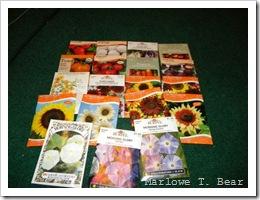 tn_2010-01-29 Garden Seeds (4)