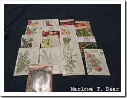 tn_2010-01-29 Garden Seeds (5)