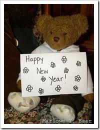 tn_2009-12-31 Happy New Year (4)