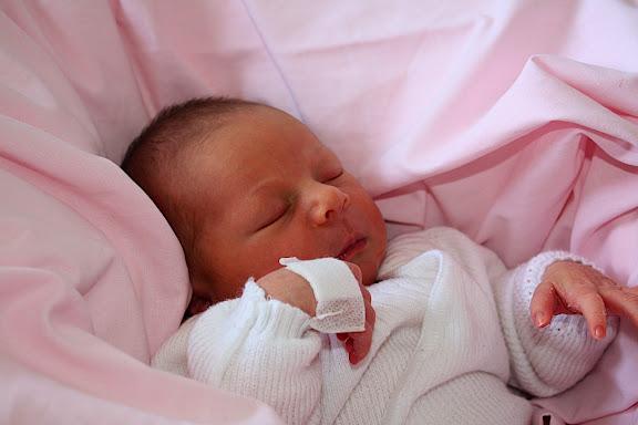 Premier bébé de l'année IMG_1725