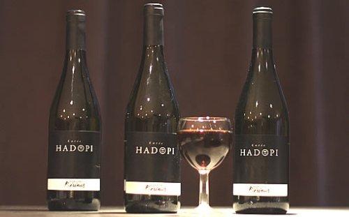 Cuvée Hadopi - Domaine Bérénas