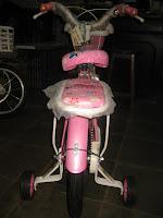 3 Sepeda Anak EVERBEST Sweet Girl - Dop