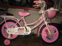 1 Sepeda Anak EVERBEST Sweet Girl - Dop