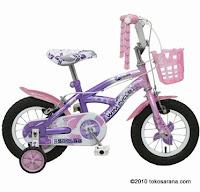 Sepeda Anak WIMCYCLE Mini SKYLAB 12 Inci