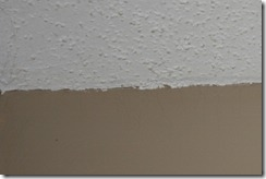 Painting Popcorn Ceilings