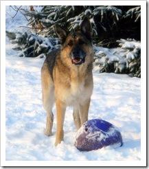 2010.4 Olivia.Kobie with Ari's balls (41)