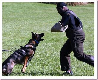 2009.10.18 Training