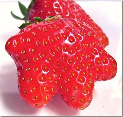 b akiranuse fresa