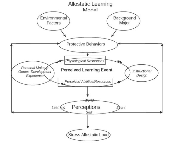 Allostatic learning model