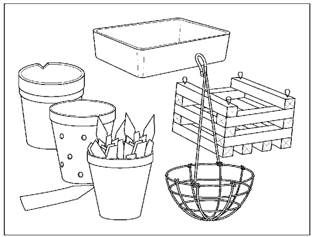 You can find many different types of containers for growing orchids.