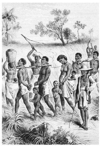 A Band of Captives Driven into Slavery. This illustration of slaves captured in Zanzibar was published in The Life and Explorations of David Livingston, LL.D. (1875)