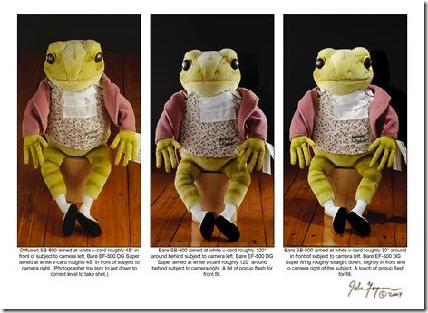 Froglighting