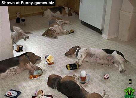 animal-drinking-party