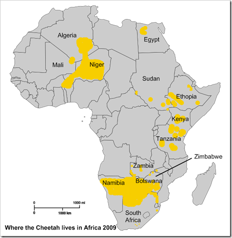 Cheetah-Range-IUCN-Red-List-Africa-1