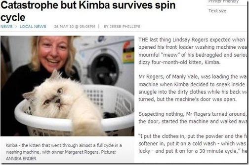 washing machine cat 1