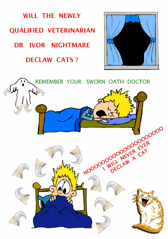 cat declawing nightmare