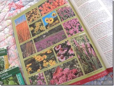 garden plans7