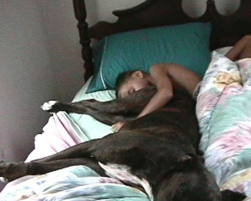 sleeping with dogp-12