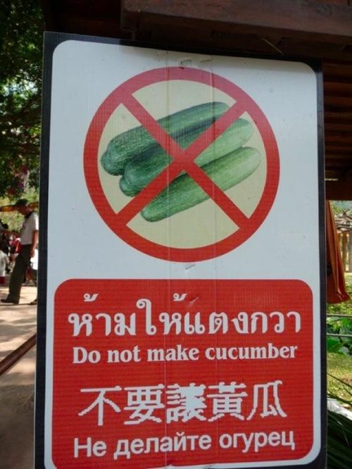 co cucumbers