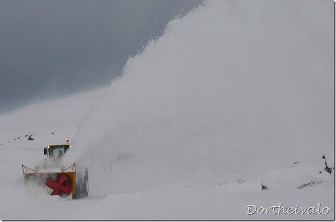 sneploven