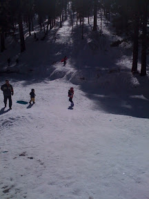 sledding at Mt. Charleston outside of Las Vegas