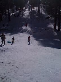 sledding at Mt. Charleston outside of Las Vegas