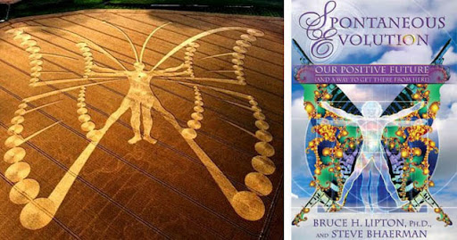 Monarch Project Crop Circle