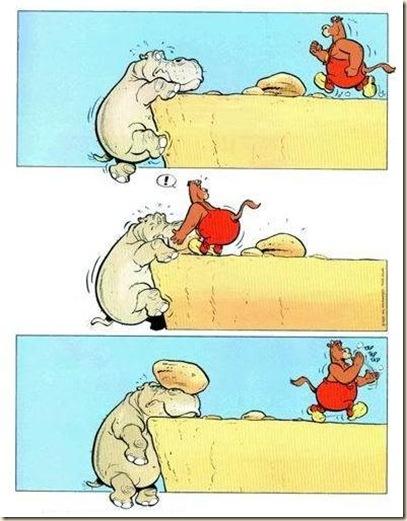Problem & Solve it