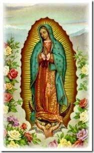 virgen guadalupe (2)