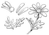 flores de arcilla (4)