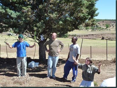 Lesotho 207