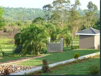 Landscaping Dec. 2010 008