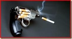 Fumo 12