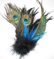 peacocksfeathers