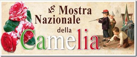 Mostra Camelia 2011