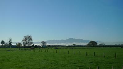 Misty Kaimai Ranges