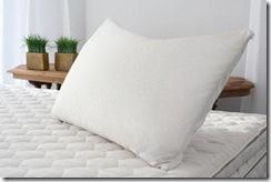 pillow-shredded