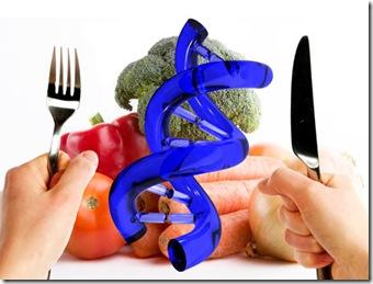 bem-verde-riscos-beneficios-alimentos-transgenicos-460x345-br[1]