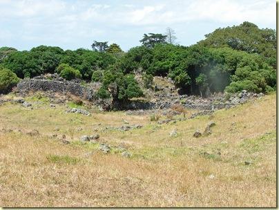 stonefields7